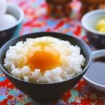 卵かけご飯とサルモネラ菌