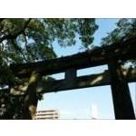 初詣子連れ東京おすすめランキング。神社はいつまでに行くべき?